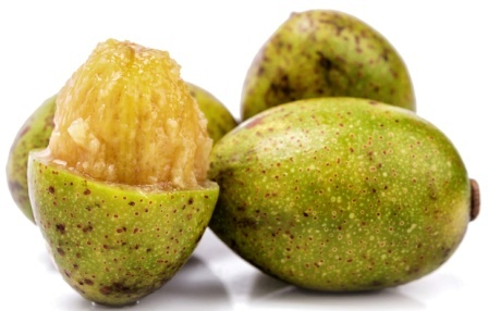 Wild Mango (Hog Plum) - Spondias pinnata Uses, Research