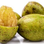 Wild Mango (Hog Plum) – Spondias pinnata Uses, Research, Remedies