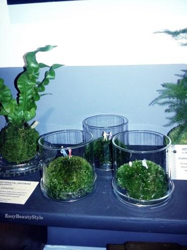 Manufacture du beau et de l'utile bougies plantes vertes papeterie 6