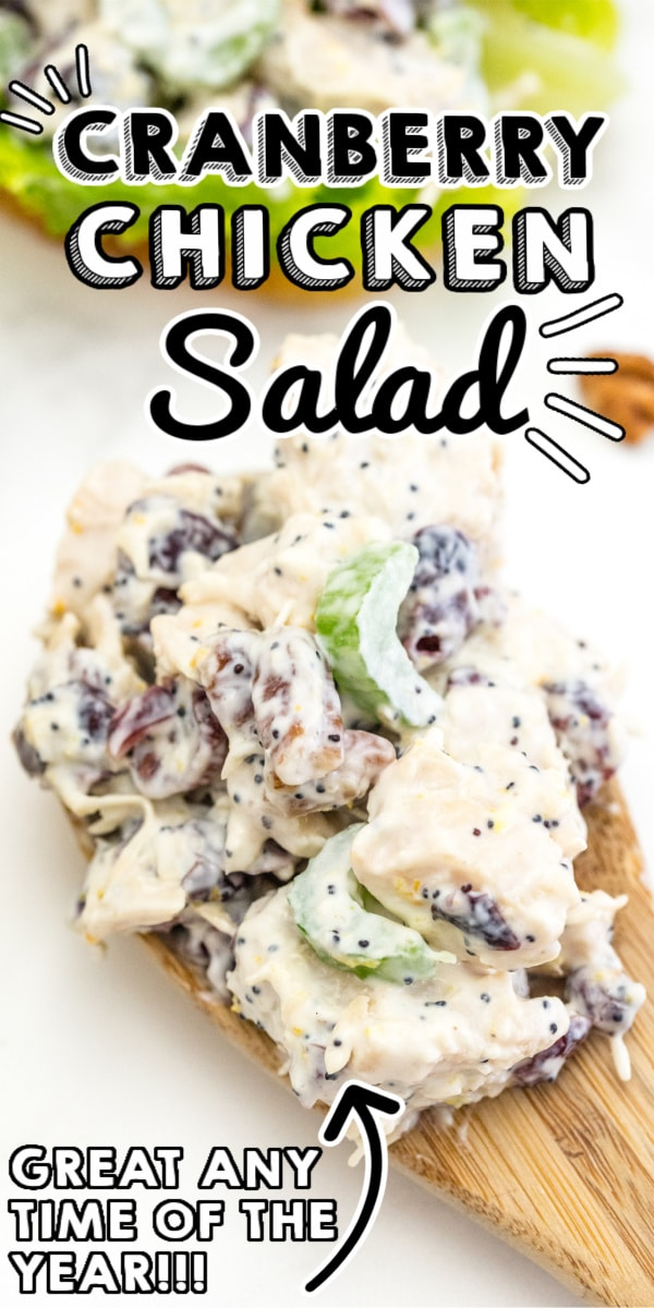 This Easy Cranberry Pecan Chicken Salad recipe is creamy, delicious, and some serious comfort food. It's a great year-round recipe that everyone loves! via @easybudgetrecipes