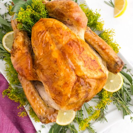 A close up picture of the finished roast turkey on a white serving platter with fresh herbs and lemon slices.