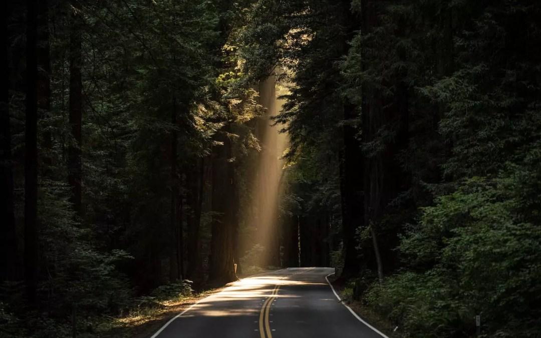 easyDITA Journey: Deciding on the Plan