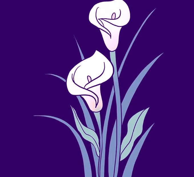 How to Draw a Calla Lily - Really Easy Drawing Tutorial