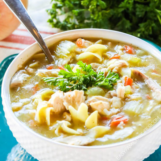 Bowl of Quick Chicken Noodle Soup made with Rotisserie Chicken