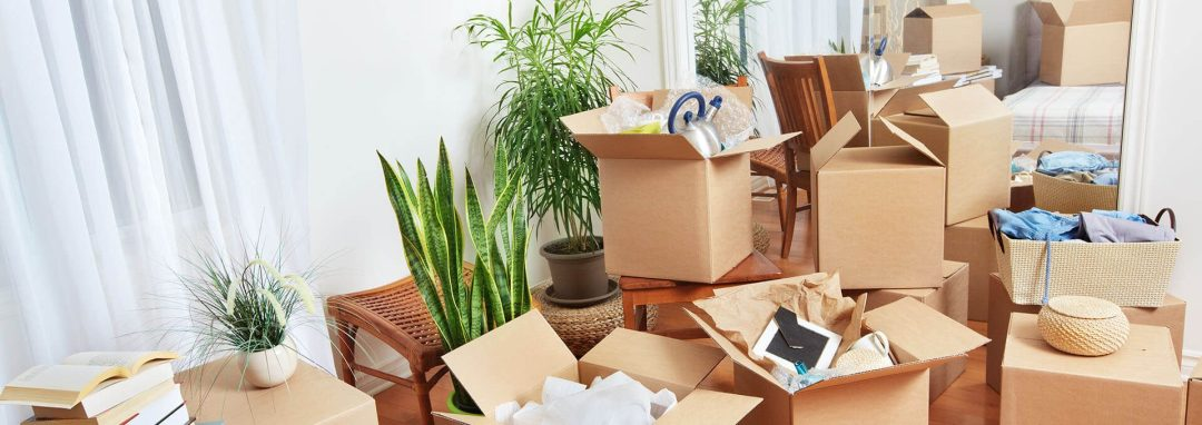 Full Service Packing.Easy Florida Moving