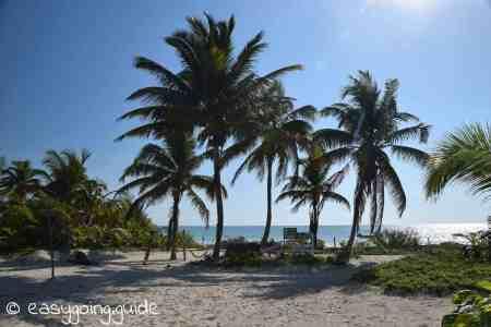 Pez Maya Meeresschutzprojekt