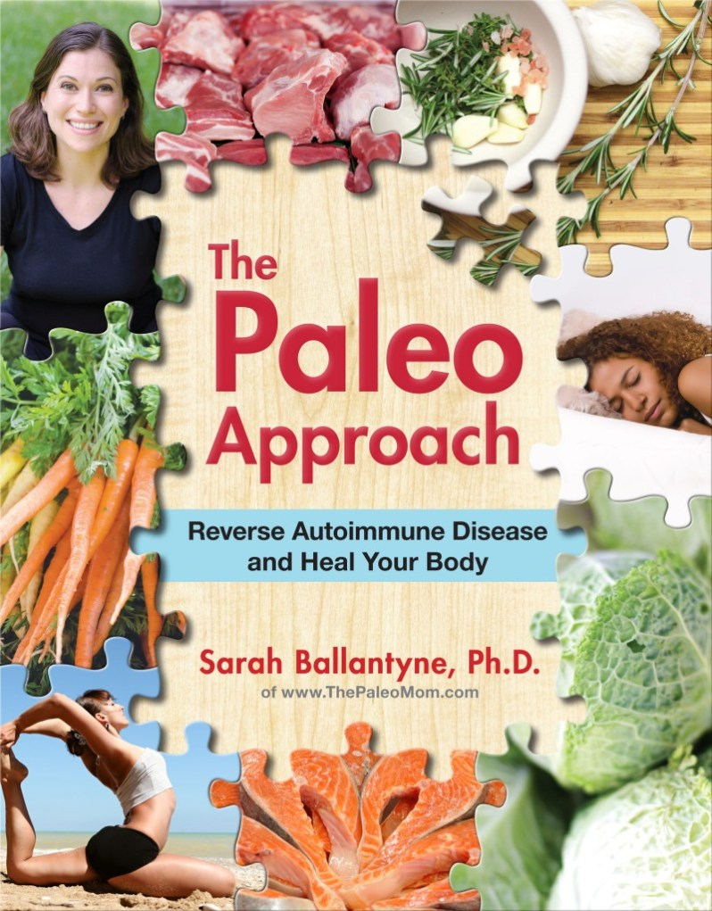ThePaleoApproach-Updated-Cover-800x1024