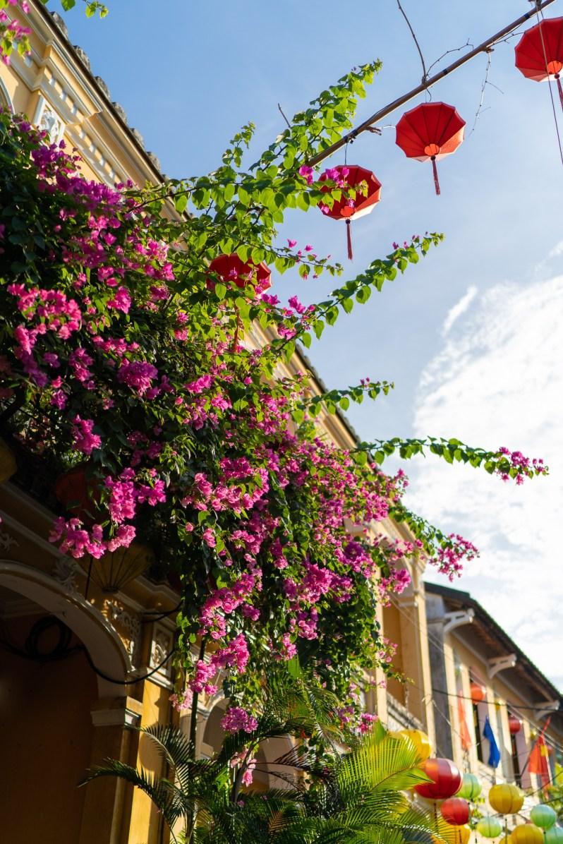 Holiday in Vietnam - Hoi An lanterns
