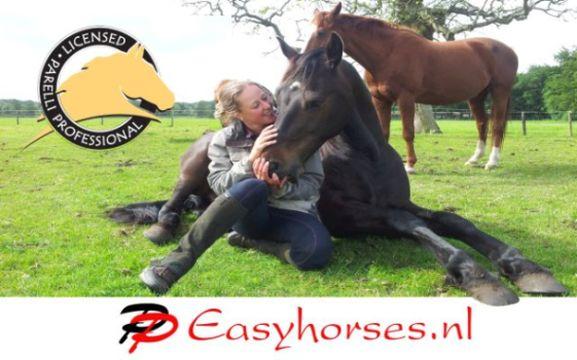 Easyhorses