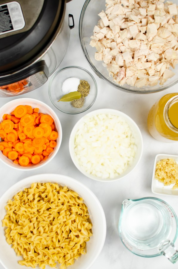 Instant pot chicken noodle soup ingredients
