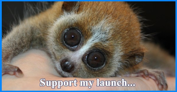 supportmylaunch
