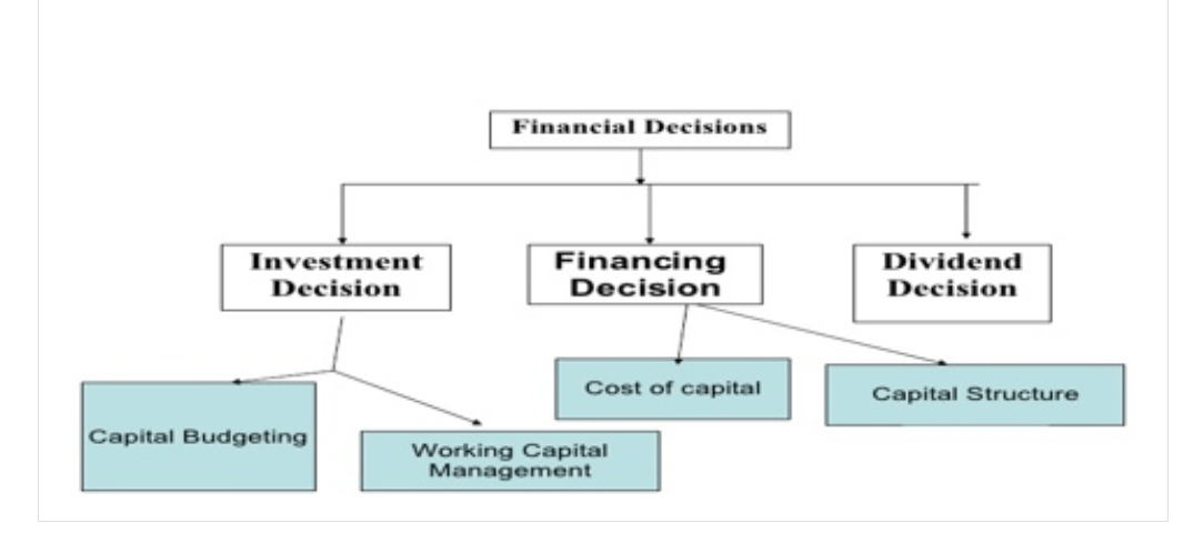 financial management: Decisions in financial management