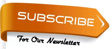 subscribe to the Newsletter for Entrepreneurs button