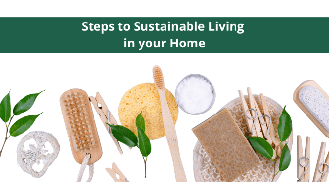 Steps to Sustainable Living in Your Home