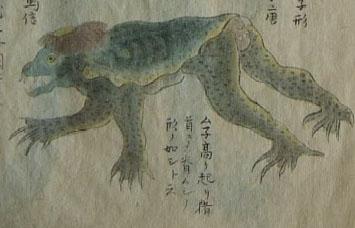享和元年(一八〇一)に水戸藩東浜で網にかかった河童の姿