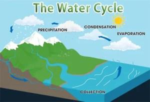 Water Cycle Quiz – FREE Interactive General Quiz Questions