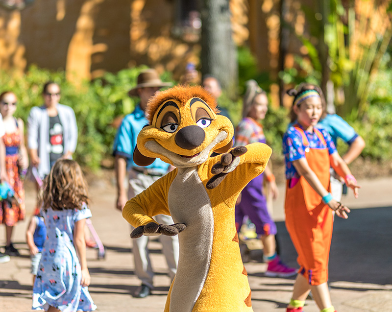 Timon Meet Discovery Island