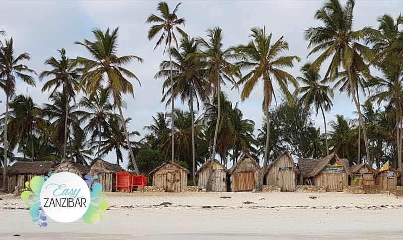 paesaggio zanzibar tanzania