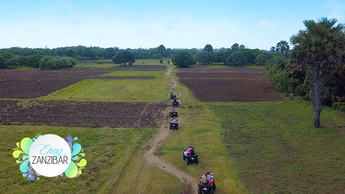 quad vista aerea