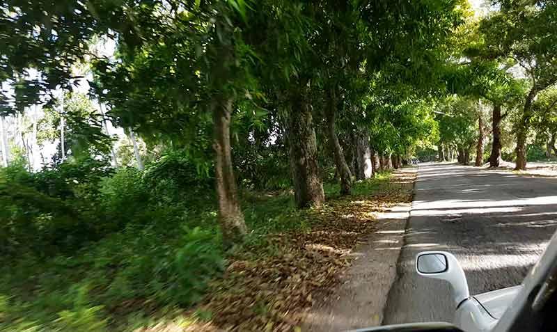strade a zanzibar