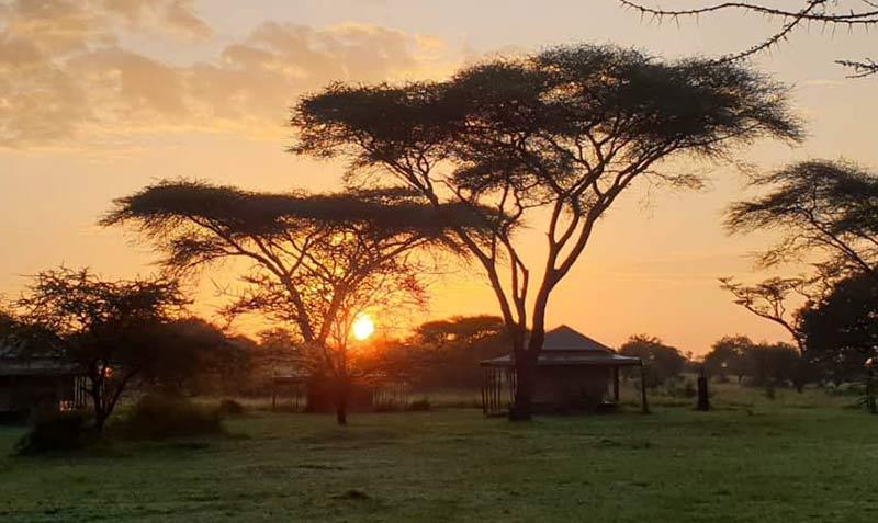 campi-tendati-safari