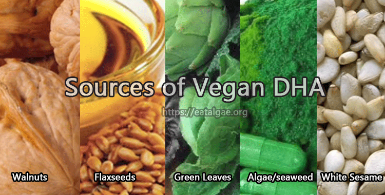 best vegan dha sources