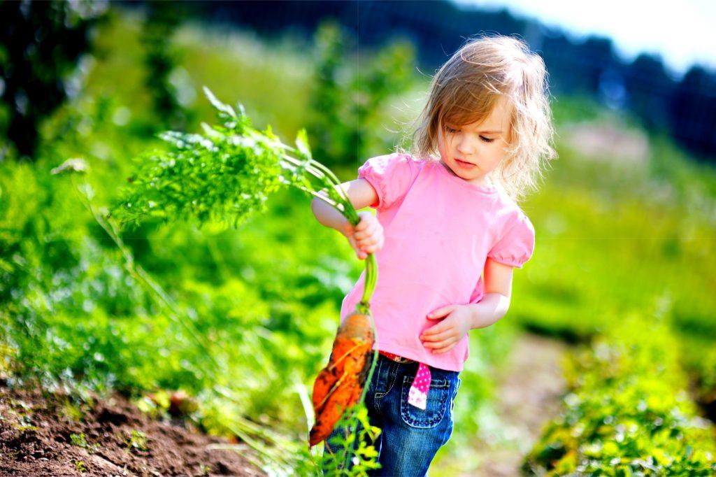 畑でニンジンを持った女の子