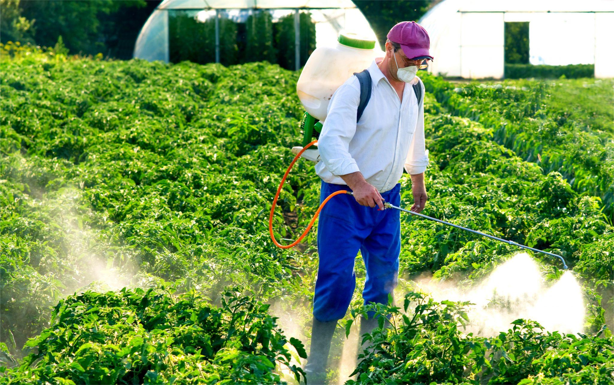 農薬を散布している人