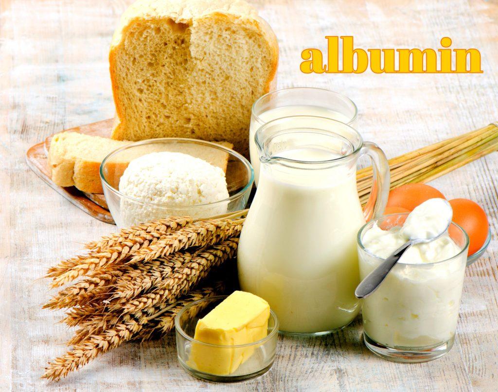 アルブミン食品