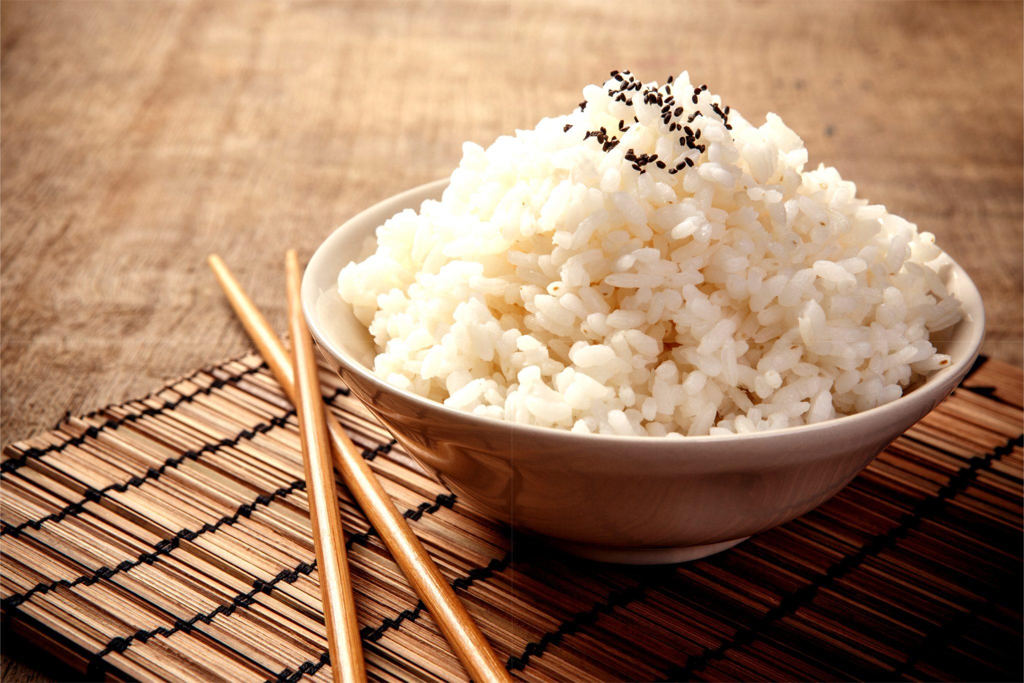 出来立ての日本のご飯
