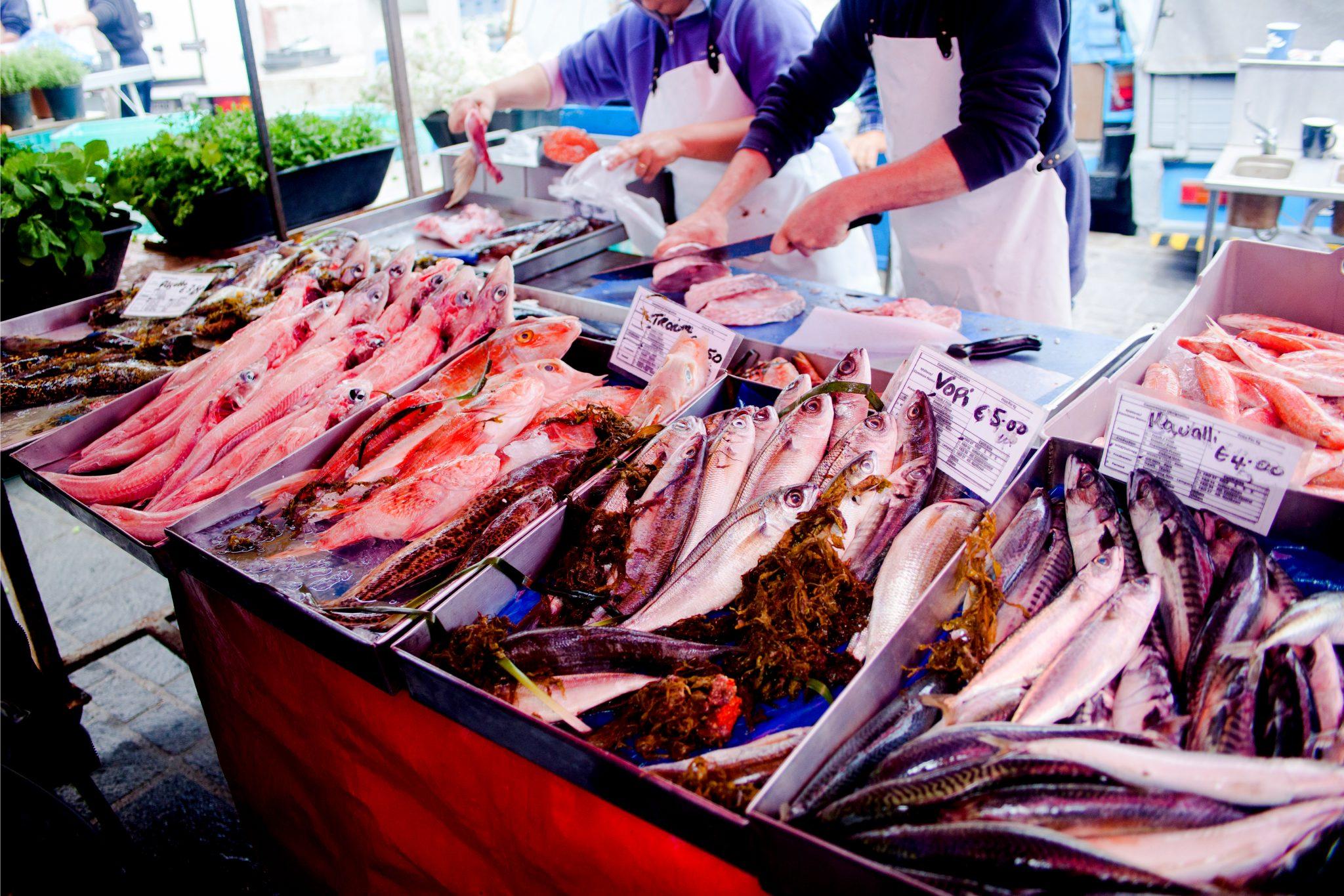 日本の魚市場