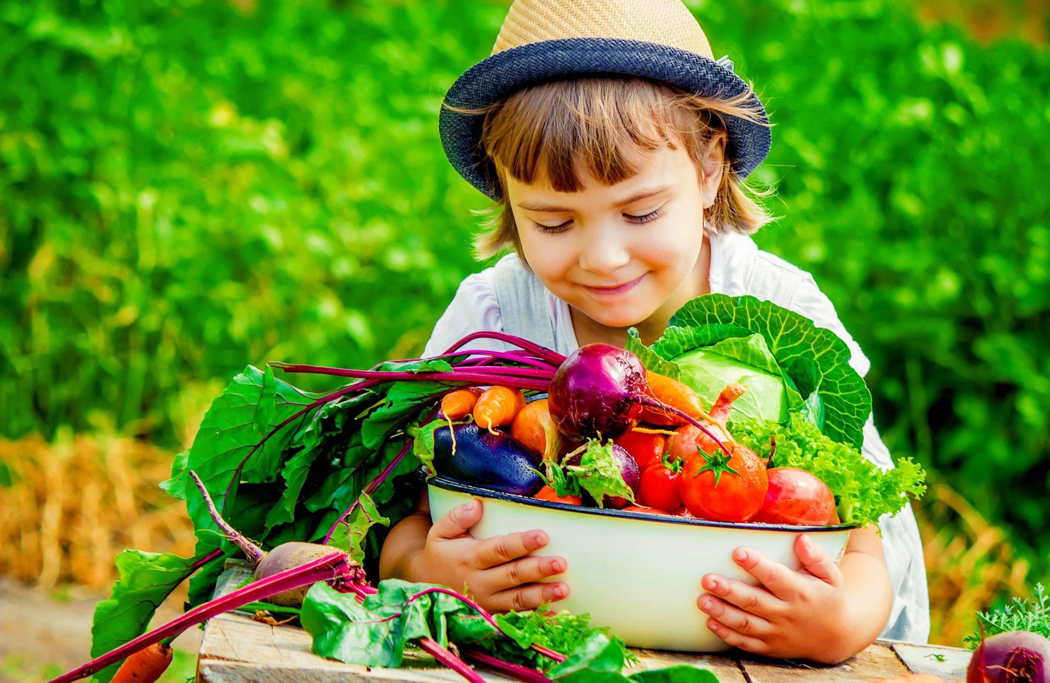 畑で野菜をたくさん抱えている女の子