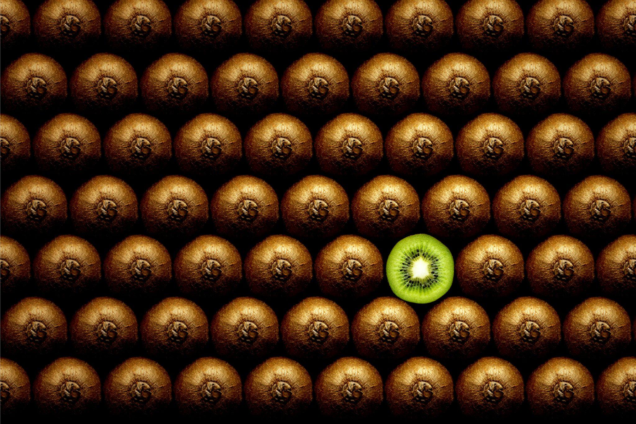 沢山並べられたキウイフルーツ