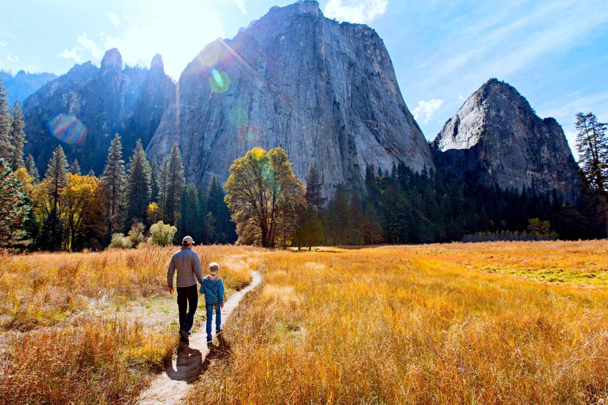 広大な草原の中を散歩している親子