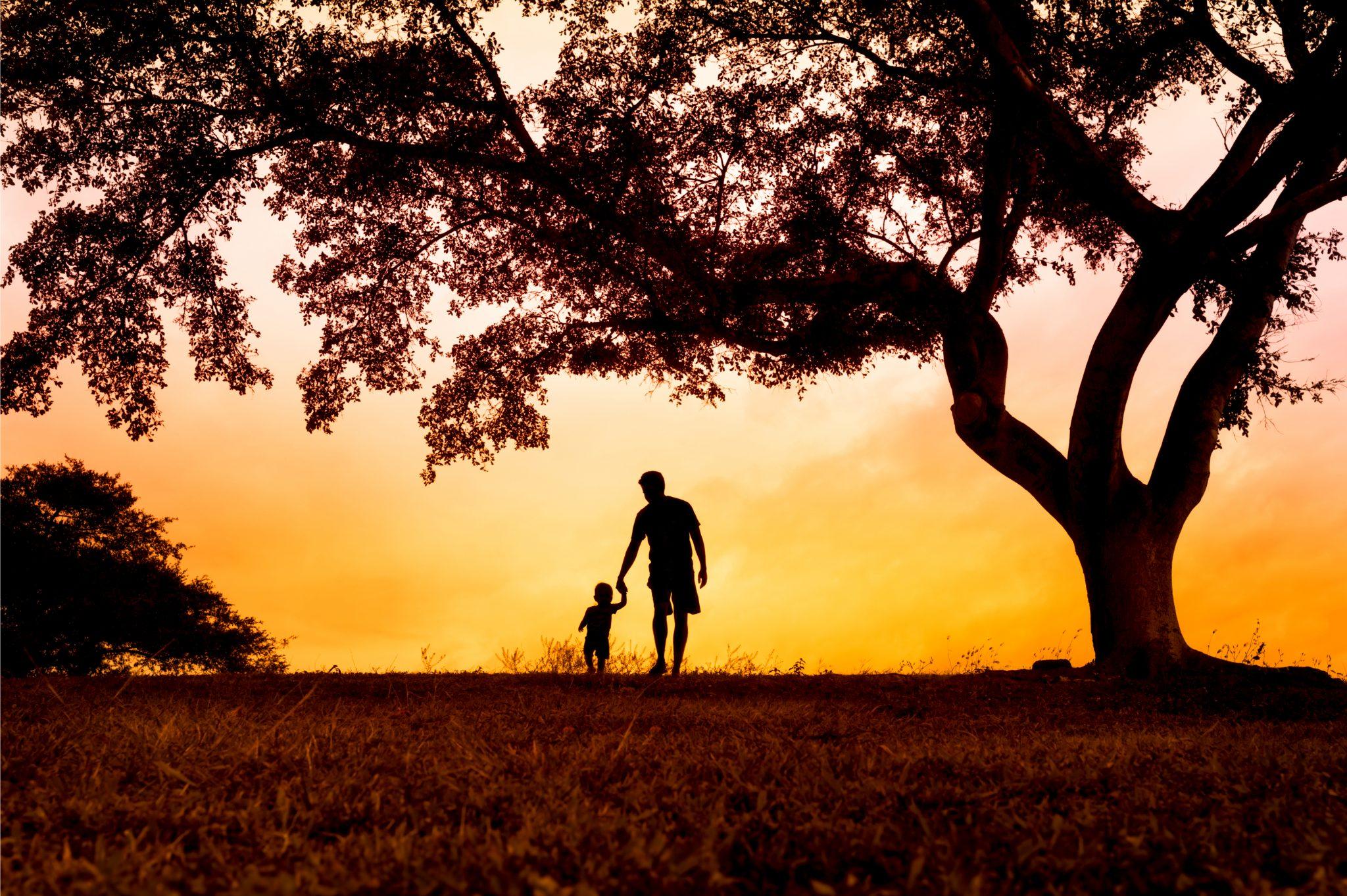 親子で夕日の中草原を歩いている