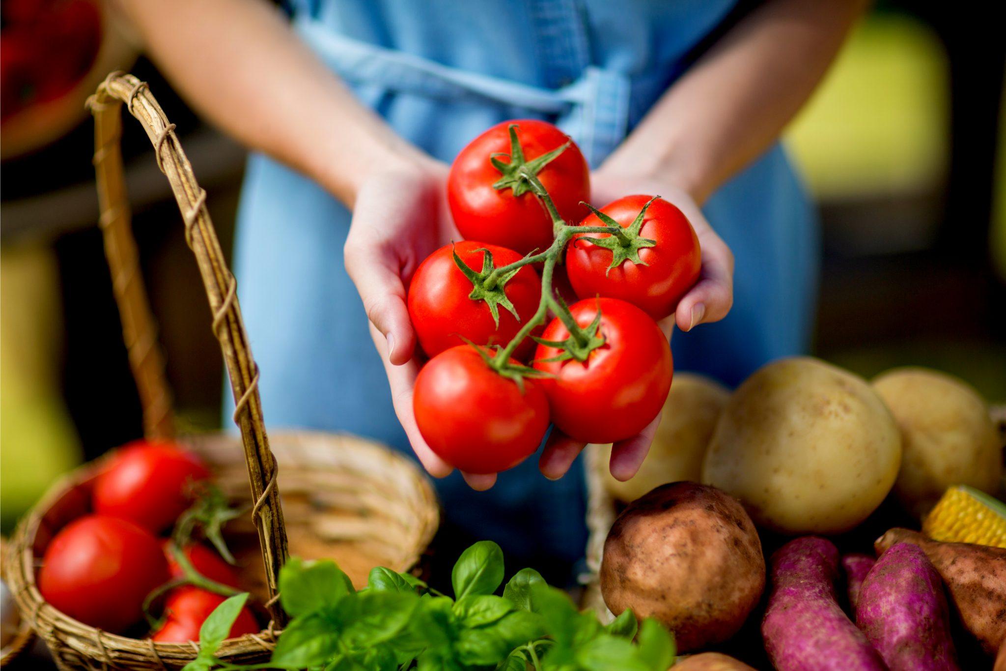 トマト料理を作り始めようとしている女性