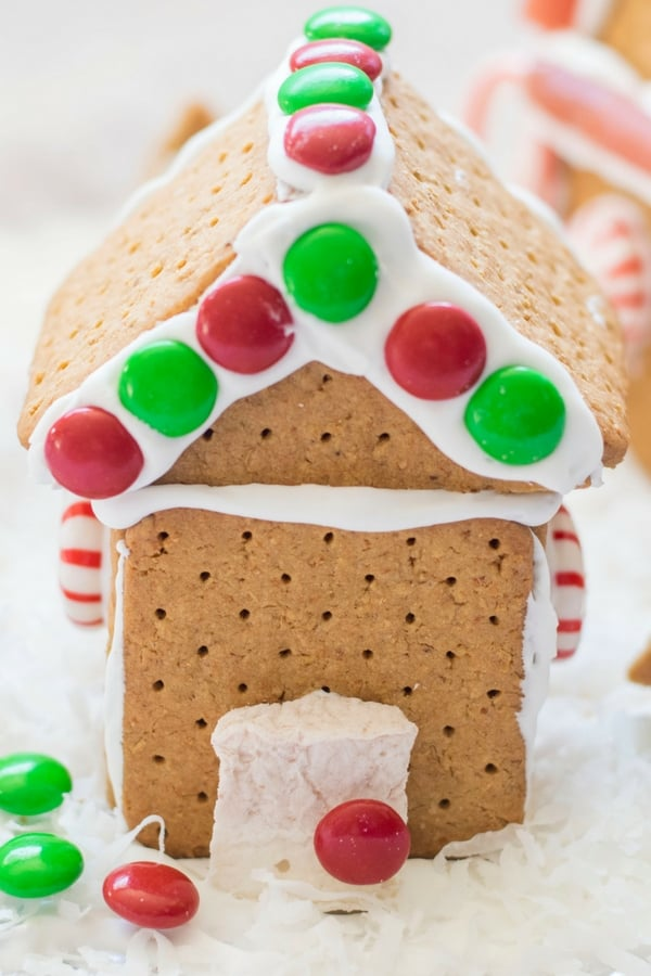 Gluten free gingerbread house