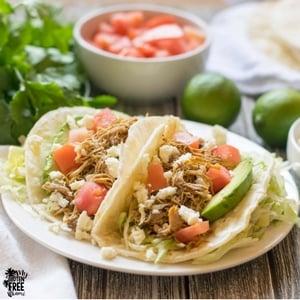 mexican shredded chicken tacos
