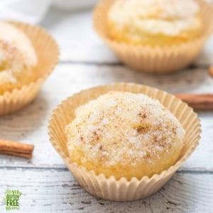 Gluten Free Donut Muffins