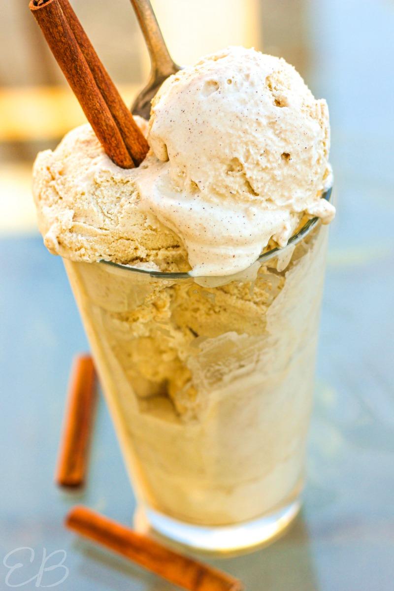 Paleo Cinnamon Ice Cream