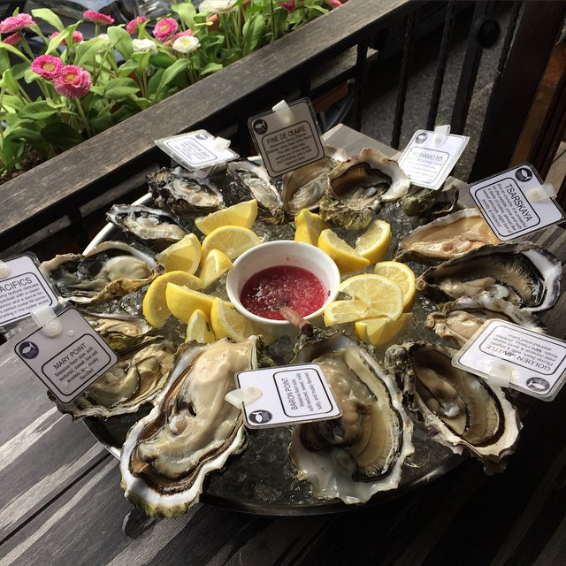 cheap-oysters-singapore-1