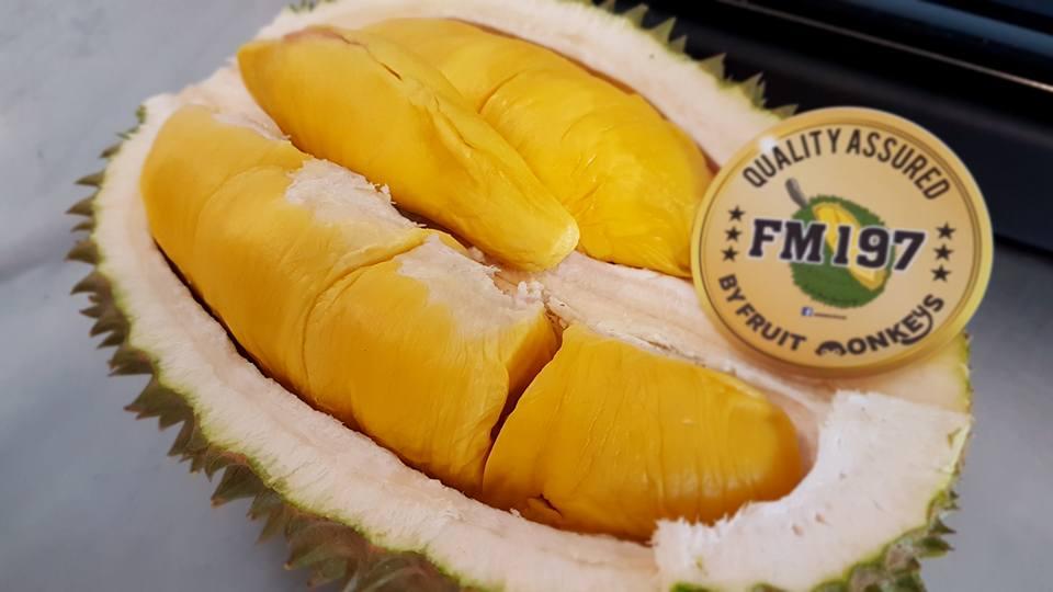 durian delivery- fruit monkeys-min