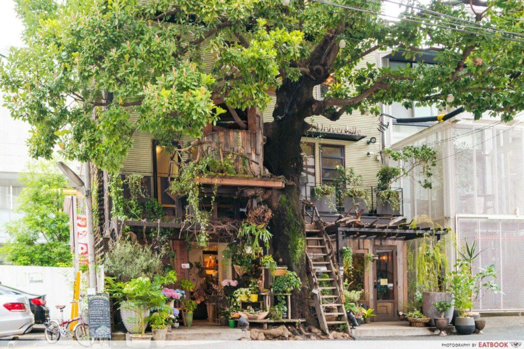 Tokyo treehouse cafe - les grands arbres