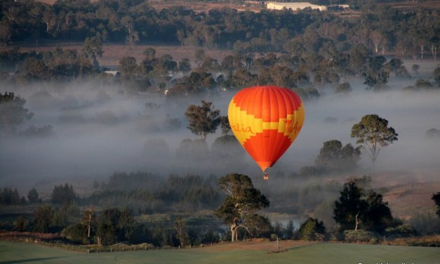 Fly high over the Gold Coast in a hot air balloon