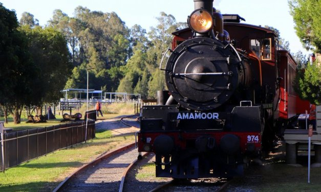 All aboard The Mary Valley Rattler