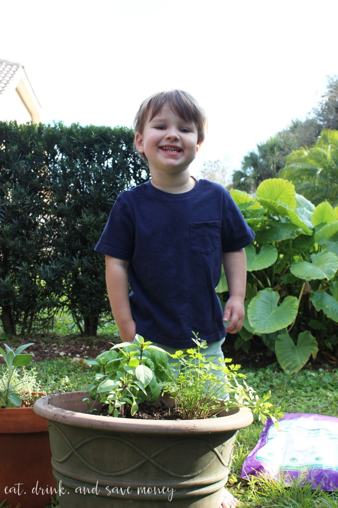 Robert helping with the herb container garden
