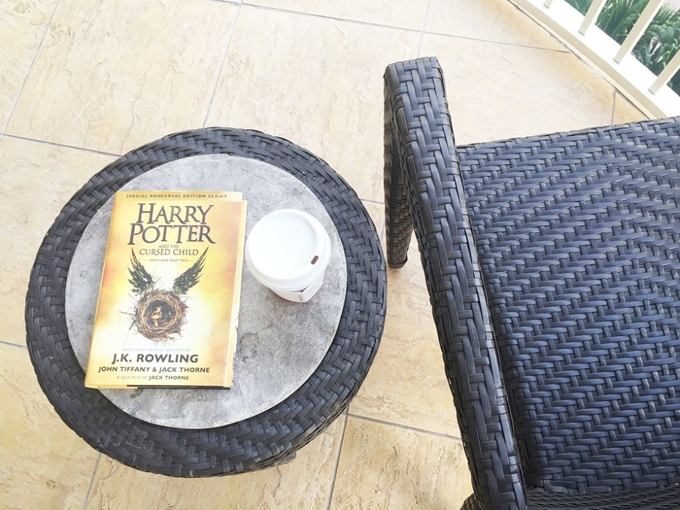Harry Potter beach book