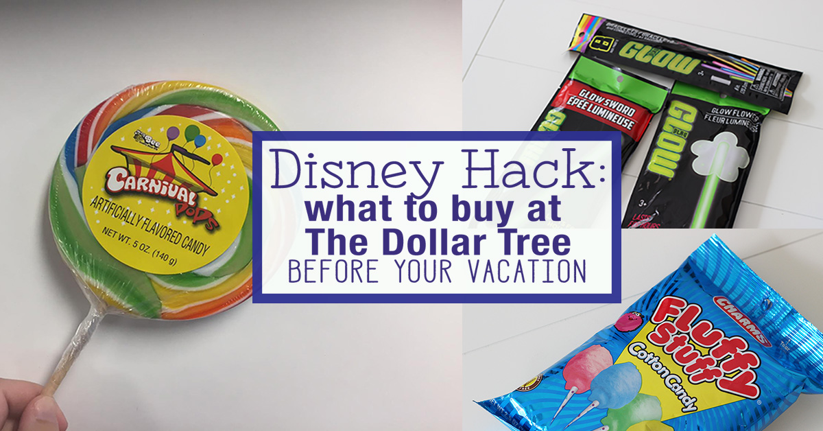 Disney Hack: What to Buy at The Dollar Tree Before Your Trip