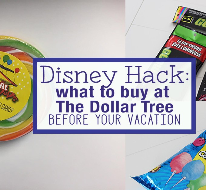 Disney Hack- All the things you need at The Dollar Tree