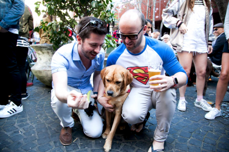 Sydney Dog Friendly Pubs - The Beresford